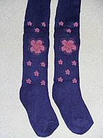 Колготки махровые Фиолетовый с цветами