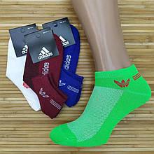 Шкарпетки жіночі з сіткою короткі SPORT А Туреччина, р. 36-41, кольорове асорті, 20014285