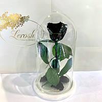 Черная роза в колбе Lerosh - Classic 27 см