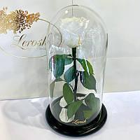 Белая роза в колбе Lerosh - Classic 27 см