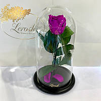 Фиолетовая роза в колбе Lerosh - Classic 27 см