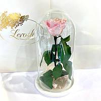Розовая Жемчужная роза в колбе Lerosh - Classic 27 см