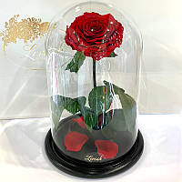 Краснаяроза в колбе Lerosh - Lux 33 см
