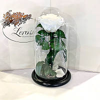 Белая роза в колбе Lerosh - Premium 27 см
