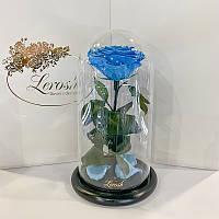 Голубая роза в колбе Lerosh - Premium 27 см