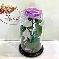 Лиловая роза в колбе Lerosh - Premium 27 см