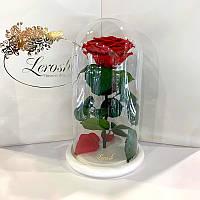 Краснаяроза в колбе Lerosh - Premium 27 см на белой подставке