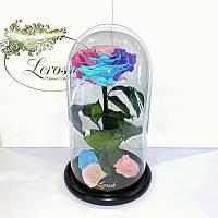 Нежная Радужная роза в колбе Lerosh - Premium 27 см