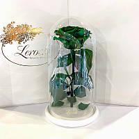 Зеленая роза в колбе Lerosh - Premium 27 см