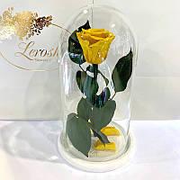 Желтая роза в колбе Lerosh - Classic 27 см