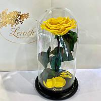 Желтая роза в колбе Lerosh - Premium 27 см