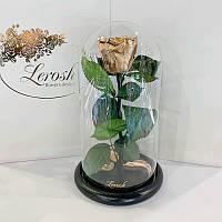 Золотая роза в колбе Lerosh - Classic 27 см