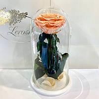 Персиковая роза в колбе Lerosh - Premium 27 см