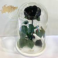 Черная роза в колбе Lerosh - Lux 33 см