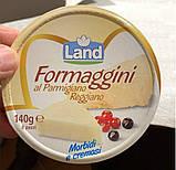 Сырок мягкий из пармезана 140 грамм, фото 2