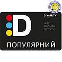 «Популярный» - основной пакет DIVAN.TV   220 каналов, 65 канал в HD, архив 14 дней   5 устройств   промокод, фото 2