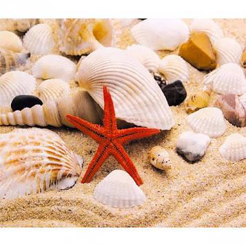 Картина по номерам 40х50 см DIY Красная морская звезда (FX 30443)