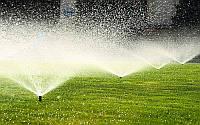 Автоматический полив растений: применение на участке