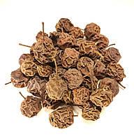 Груша дичка (дикая груша) 500 грам