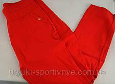 Брюки женские летние  хлопок 3XL - 4XL в красном цвете  Польша - Товар с витрины, фото 2