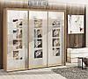 Шкаф купе на заказ стеклянные фасады с пескоструйным рисунком