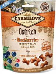 Лакомство для собак Carnilove Crunchy Snack Ostrich with Blackberries (со страусом и ежевикой) 200 г