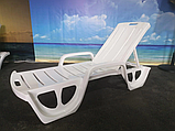 Шезлонг - лежак Allibert by Keter Florida Sunlounger ( Curver ) White ( белый ), фото 7