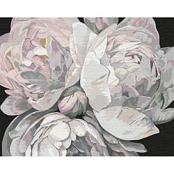 Картина по номерам КНО3114 Краски пионов, 40x50 см., Идейка