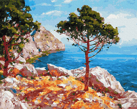 Картина за Номерами Кримський пейзаж 40х50см RainbowArt, фото 2