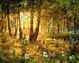 Картина за Номерами Казкова галявина 40х50см RainbowArt