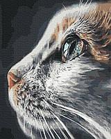 Картина по Номерам Взгляд кошки 40х50см RainbowArt