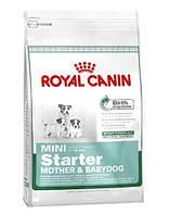 Корм Royal Canin (Роял Канин) MINI STARTER для собак мелких пород (щенков, кормящих, беременных сук) 8,5 кг