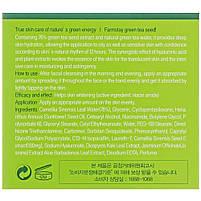 Осветляющий крем для лица с зеленым чаем Farmstay Green Tea Seed Whitening Water Cream 100 г (8809317287065), фото 3