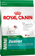 Royal Canin (Роял Канин) MINI JUNIOR (МИНИ ЮНИОР для щенков 2 - 10 месяцев) 2 кг
