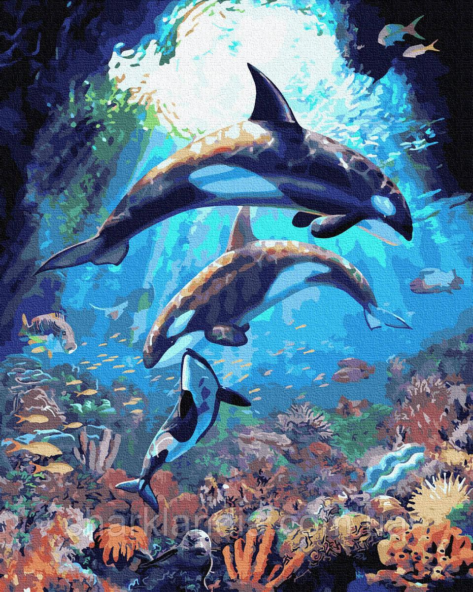 Картина по Номерам Подводный мир дельфинов 40х50см RainbowArt