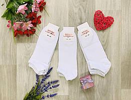 Носки демисезонные хлопок укороченные Житомир ТМ LOMANI Турция размер 40-44 белые