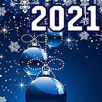 Поздравляем с Новым 2021 годом и Рождеством!