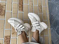 Женские кроссовки кожаные весна/осень бежевые Mkrafvt 2142, фото 1