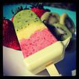 Кухонный комбайн мороженица Yonanas для переработки фруктов и ягод Yonanas Frozen Treat Maker, фото 3