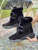 Женские ботинки замшевые зимние черные U Spirit 1152