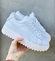 Женские ботинки кожаные зимние белые Nev-Men P бел, фото 1