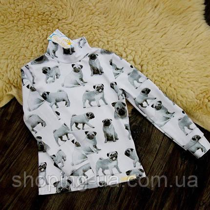 Детская водолазка - гольф мопсики Five Stars KD0417-140р, фото 2