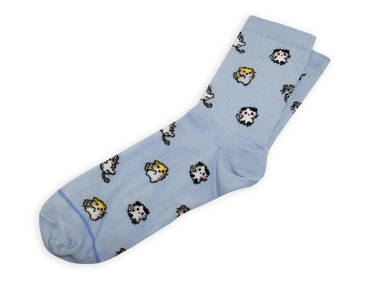 Женские носки LOMM Premium Котики голубые