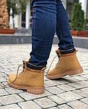 Мужские Ботинки Тимберленд Спорт Зима, фото 5