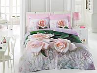 Постельное белье Cotton box Ранфорс Floral Seri 3D ANNA PEMBE с букетом роз