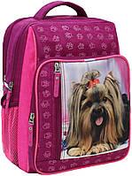 Рюкзак школьный Bagland Школьник 8 л. малина (собака 18) (00112702), фото 1