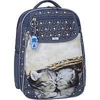 Рюкзак школьный Bagland Отличник 20 л. 321 сірий 165к (0058070), фото 1