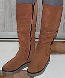 Зимові високі жіночі замшеві чоботи на товстій підошві від виробника модель ПЕ2019Р, фото 5