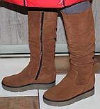 Зимові високі жіночі замшеві чоботи на товстій підошві від виробника модель ПЕ2019Р, фото 6