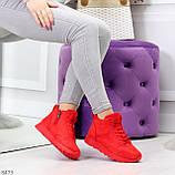Яркие высокие замшевые красные женские кроссовки на молнии, фото 9